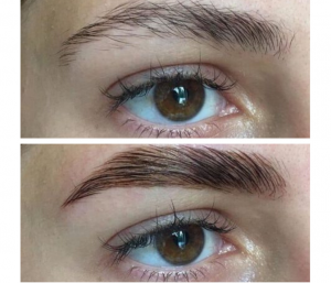 Sourcils Browlift restructurés